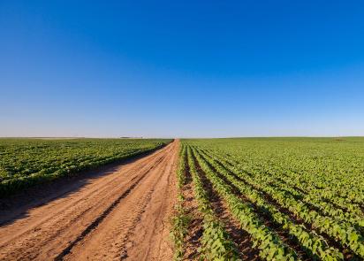 Activités agricoles, pas de confinement