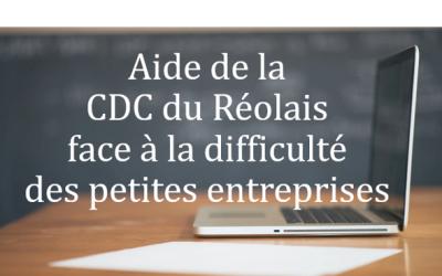 LES AIDES DE LA CDC DU REOLAIS